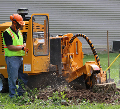 Bandit Stump Grinder 2890