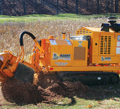 Bandit Stump Grinder 2900